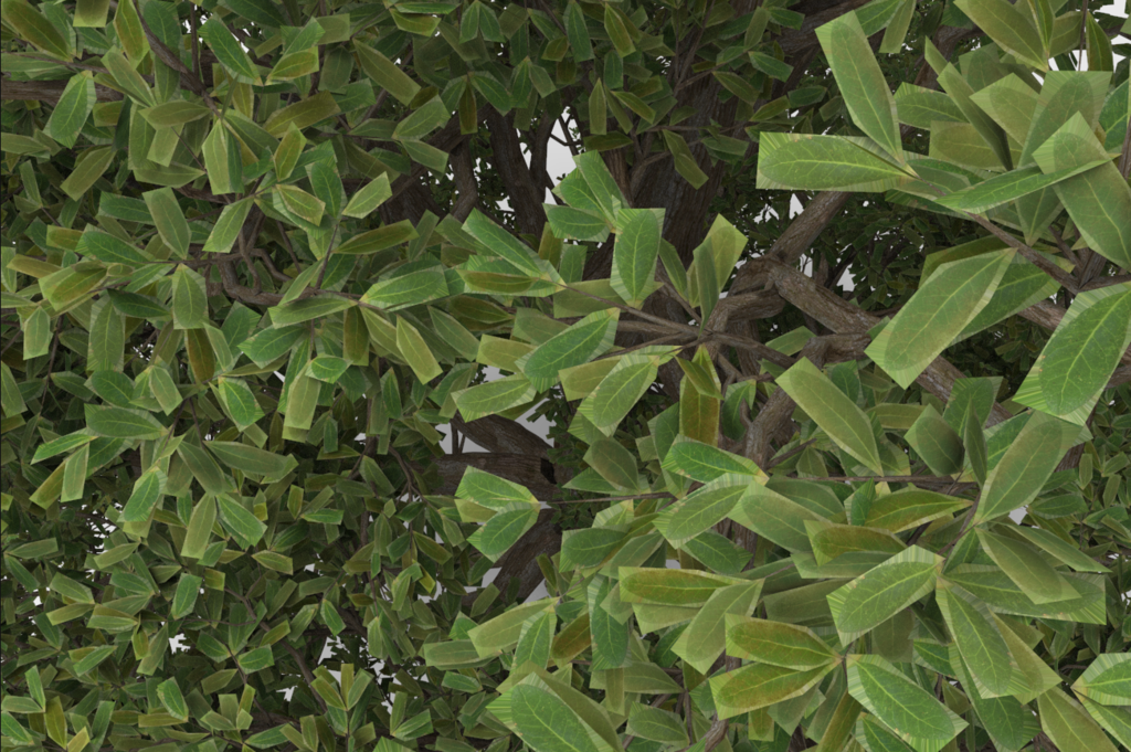 SpeedTree Cinema 8 renders - SpeedTree Forum